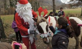 Le Père Noël est passé à la ferme équestre